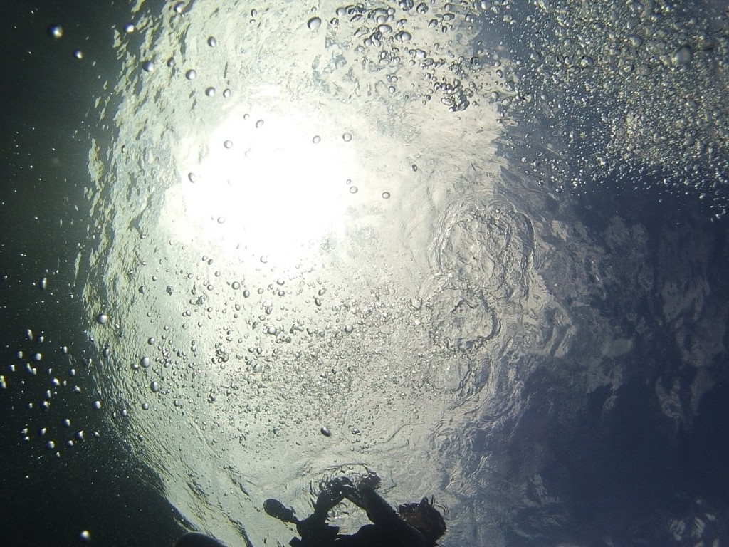 the shimmering surface of the ocean from underneath